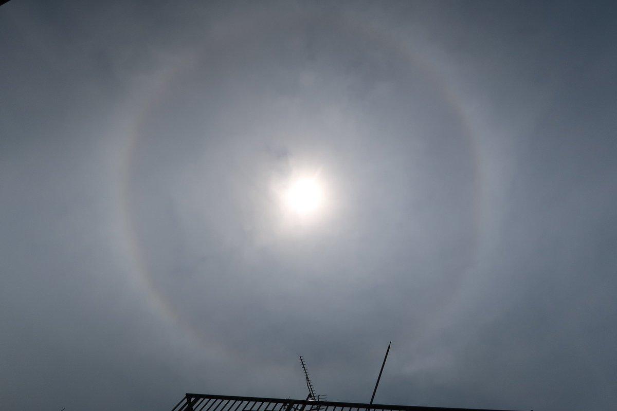 test ツイッターメディア - 7月17日(火) 只今、神奈川県南部にハロ(虹色現象 太陽の周りに輪)が現れました。☀️ 気温は30度を超え益々蒸し暑くなりました。💦 熱中症に注意して小まめに水分補給しましょう。😊🐶 https://t.co/CoFg0Rnb1M