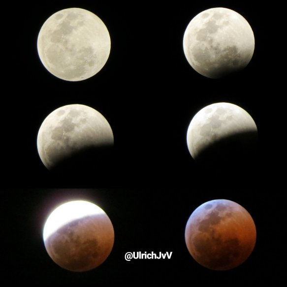 Blood Moon, live search results from google today Friday