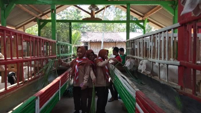 Kunjungan ke Pusat Pengolahan Susu Kambing Bumi Retawu Farm