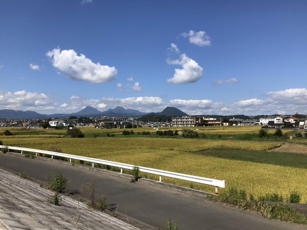 test ツイッターメディア - @Td2111Virgo ご心配いただきありがとうございます 大分市内、大きな被害はなかったのですが とにかく雨が降ったので あちこち冠水していました 写真は昨日通った田んぼと さっき通って来た 河原の風景です nozomiさんも良い一日を〜😊 https://t.co/AnAmK60Szv