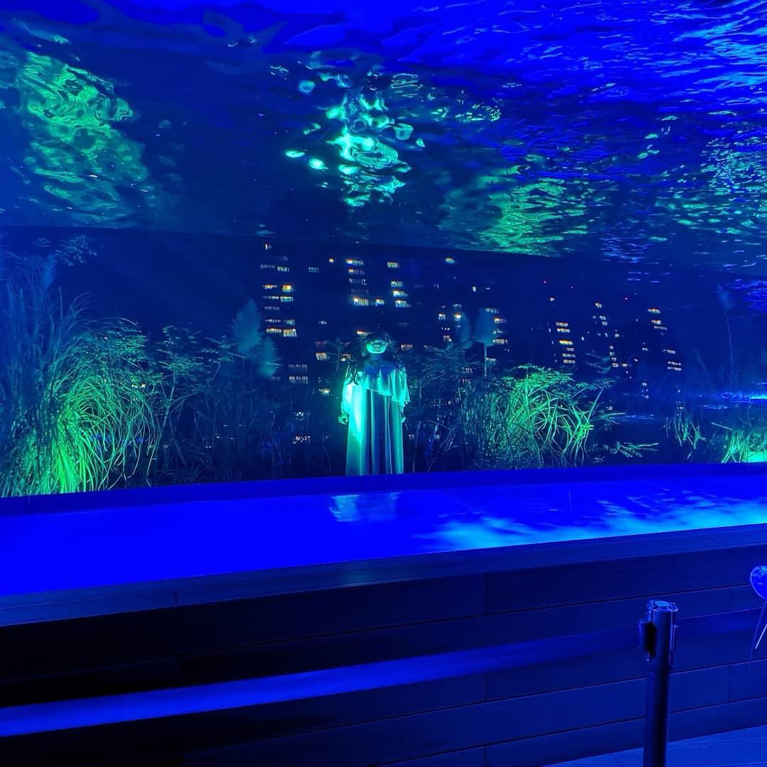 test ツイッターメディア - 開催期間が終わったのでネタバレも大丈夫かなと思って。ホラー水族館『七人ミサキ』。屋内は撮影禁止だけど、出口近くにこちらを見ていた人影が··· #サンシャイン水族館 https://t.co/5HWwkXmaqA