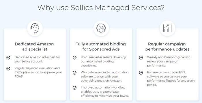 sellics review