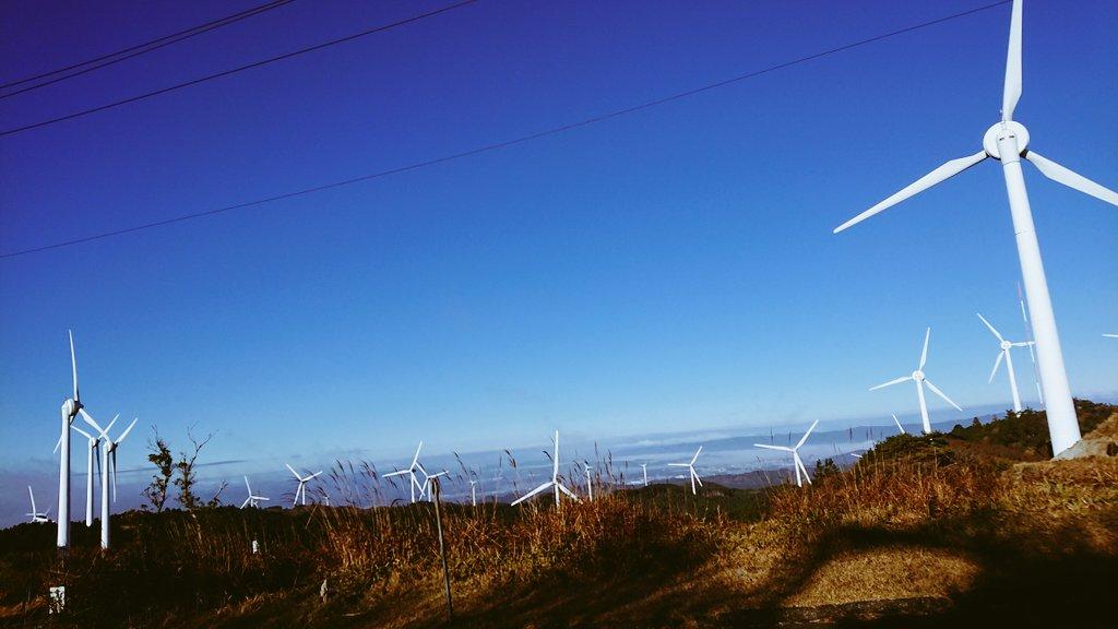 test ツイッターメディア - 青山高原めちゃくちゃ良かった‥ 風車が見えてくるまでのヒルクライムもなかなかの勾配で良い(^ω^) 伊勢湾を挟んで知多半島や渥美半島まで見渡せる日もあるそうだからまたチャレンジしようっと😋 https://t.co/2FldCCMtmS