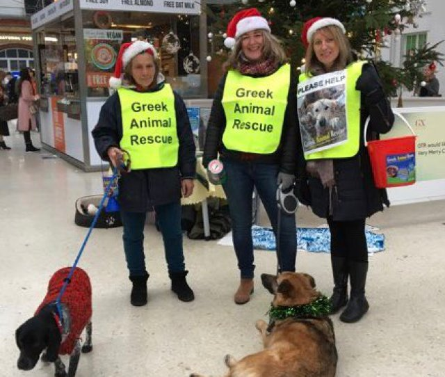 Our Team Of Volunteers Have Been Fundraising For Us At Brighton Train Station Today Huge Thanks To The Flying Coffee Bean For Keeping Our Volunteers