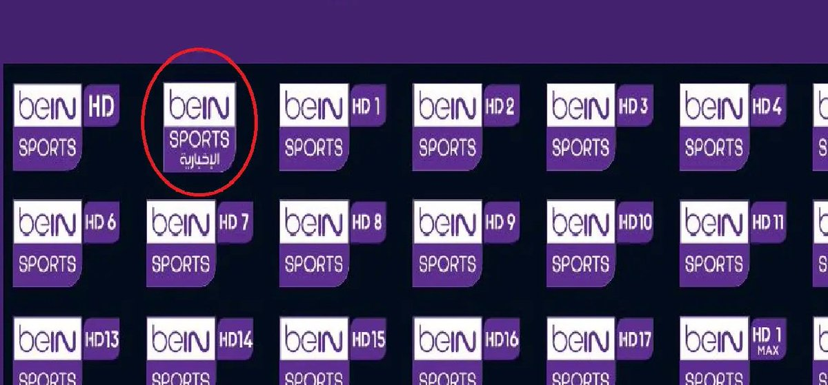 نجوم مصرية تردد بين سبورت الإخبارية على نايل سات Sports