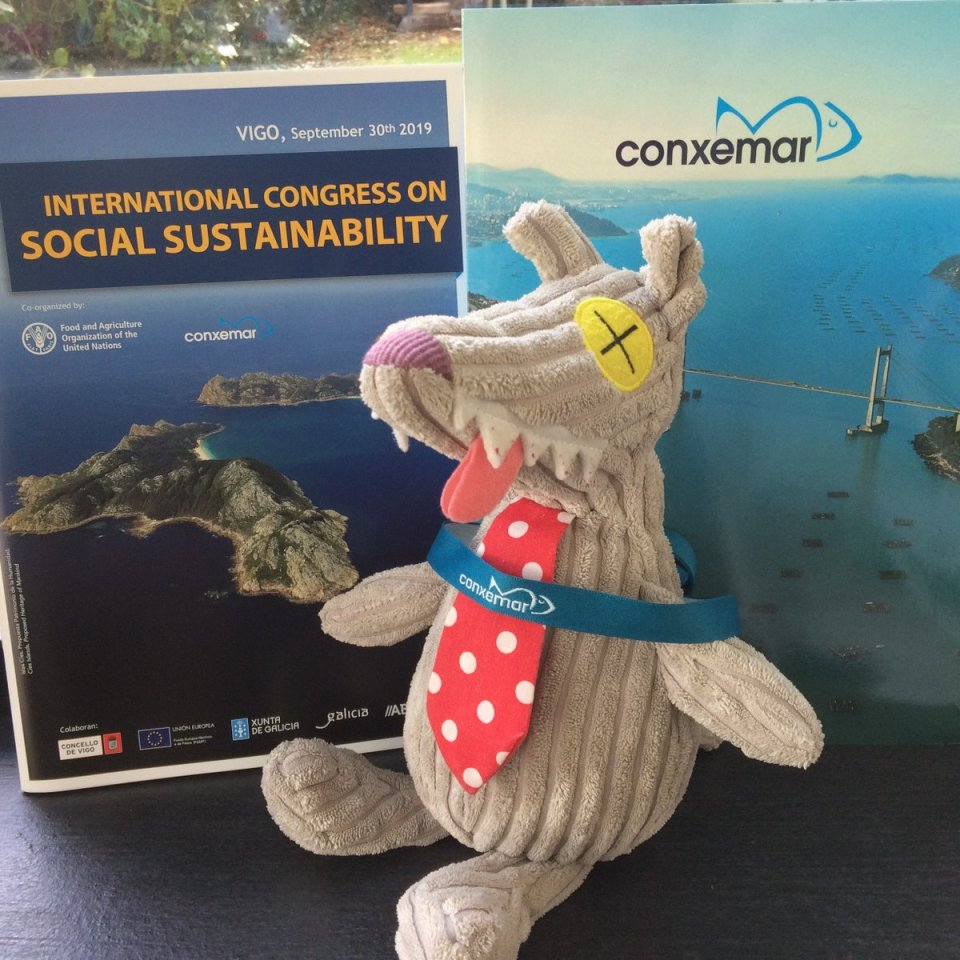 test Twitter Media - #Zeboss @FishEconomist was last week in Vigo for #Conxemar2019 and #ConxemarFAOCongress .  Lots of discussion on all dimensions of sustainability (for once...) and a quasi-overdose of octopus https://t.co/AJRZodVX2U