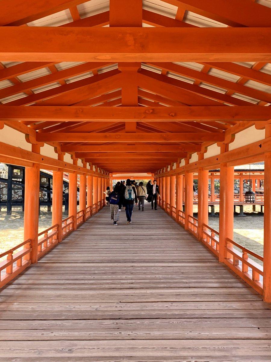 test ツイッターメディア - 【悲報】#厳島神社 の大鳥居⛩改修中でした…。下調べしていかないからこうなる🤣  あと、知らなかったんだけど干潮の時は干潟になってるところに下に降りられるんだね〜 #ねもぱい広島 #広島旅行 https://t.co/YVgKMm0Drz https://t.co/G2wxz9LALq
