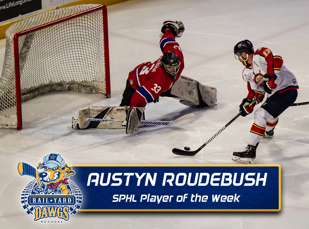 Image result for austyn roudebush hockey