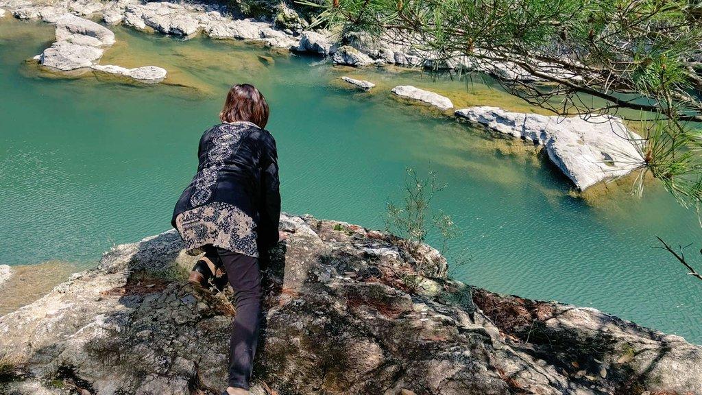 test ツイッターメディア - 大台町で己書  一歩外へ出ると 美しい川と山の景色✨  帰り寄り道。 丸山公園🦆🌸 #大台町 #己書 #丸山公園 #桜 https://t.co/lponuY6aHc