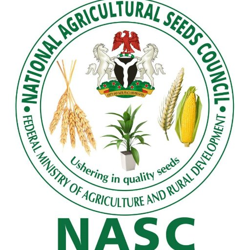 North East A Is Big Hub For Cotton Production – Nasc