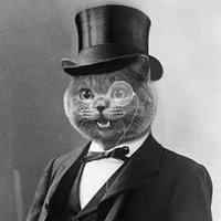 Cat in the Hat ❄ (@NotMyPrecedent )