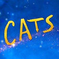 CATS (@catsmovie )