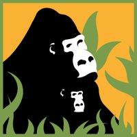 Fossey Gorilla Fund (@SavingGorillas) Twitter profile photo