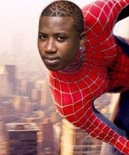 Image result for spider mayne
