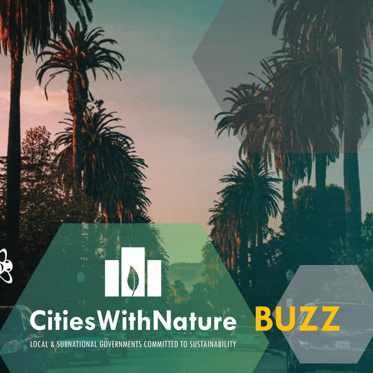 Image for the Tweet beginning: ICYMI: Our #CitiesWithNature BUZZ November
