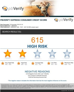 A full Consumer Credit Report will detail the negative reasons for a High Risk consumer's negative rating.
