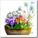 シャイプで作る植木鉢とアレンジメント