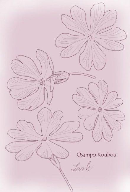 osampokoubouサクラソウ花のパーツsample