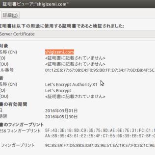 図2:pc.shigizemi.comの有効期限