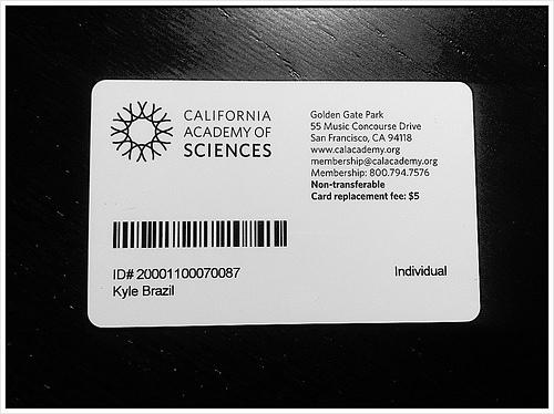 Membership Card Templates templates archives page 9 of 10 plastic – Sample Membership Card