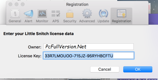 Little Snitch License Key