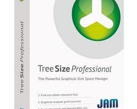 TreeSize Professional Keygen