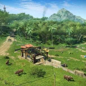 Far Cry 3 (7)