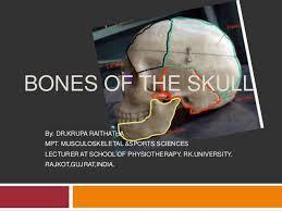 Skull And Bones Crack PC Download Torrent CPY - FCKDRM