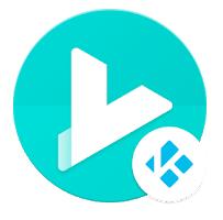 Yatse App for PC