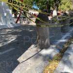 Calzada Fray Antonio de San Miguel mantenimiento