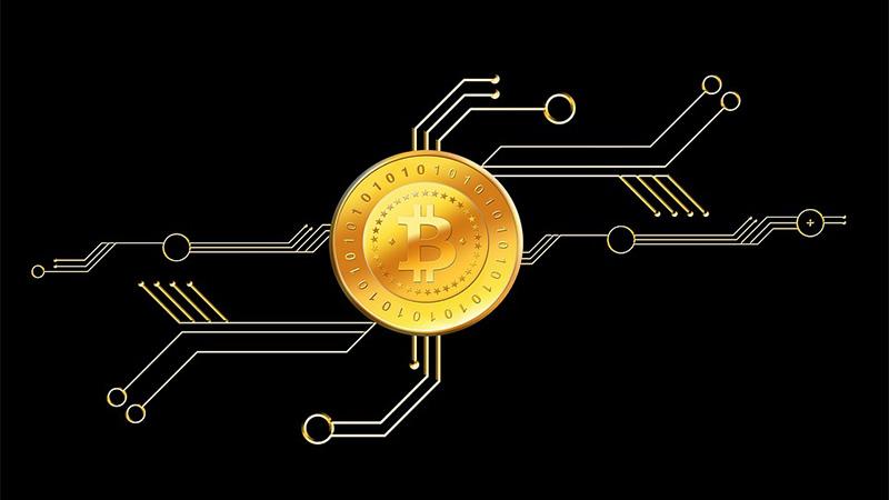 koliko milijunaša iz bitcoina svakodnevno trguje kriptovalutom