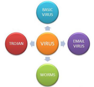 Types of computer viruses | My Blog