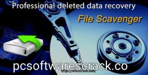 File Scavenger 6.1 Crack + Serial Key Free Download 2021