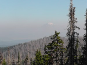 Mount Rainier Cap
