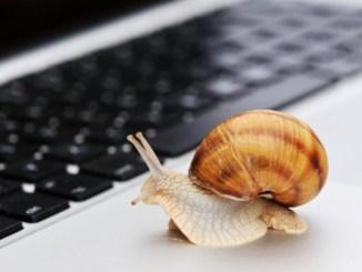 vitesse Internet, Internet