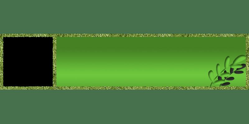 メッセージウィンドウ:緑
