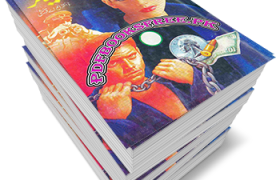 Tiger Novel Complete 13 Volumes by Mushtaq Ahmed Qureshi