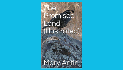 mary antin the promised land pdf