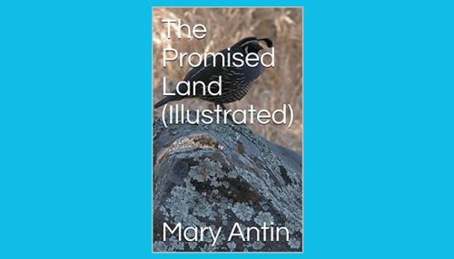 mary antin the promised land pdf