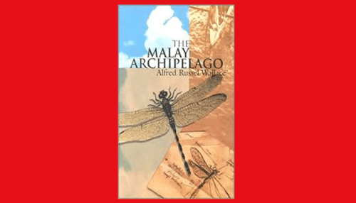 the malay archipelago pdf