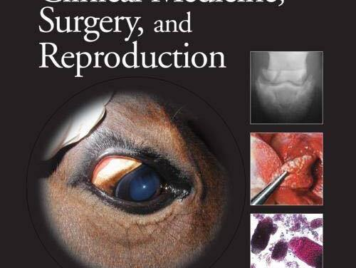 Equine Clinical Medicine Surgery and Reproduction