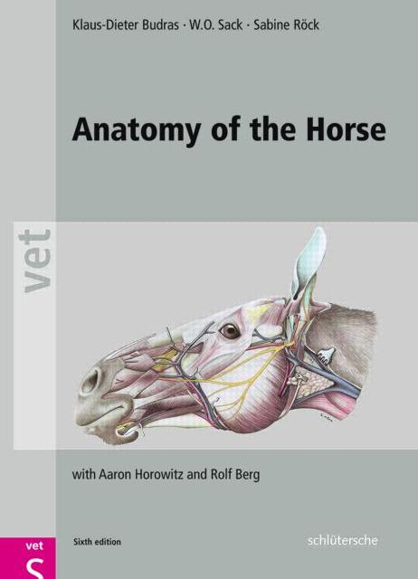 Anatomy of the Horse PDF by Budras, Sack and Bock