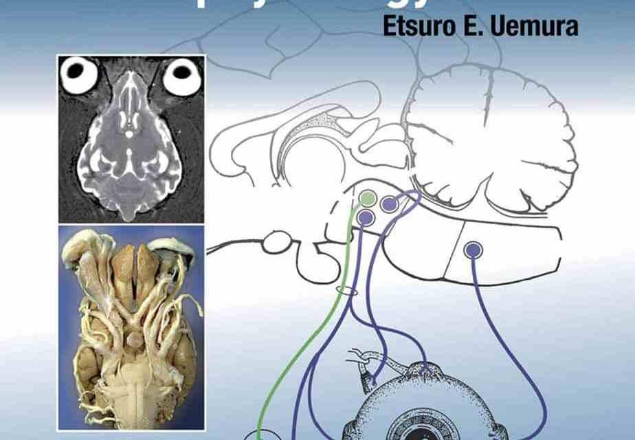Fundamentals of Canine Neuroanatomy and Neurophysiology PDF