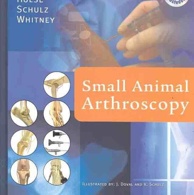 Small Animal Arthroscopy PDF