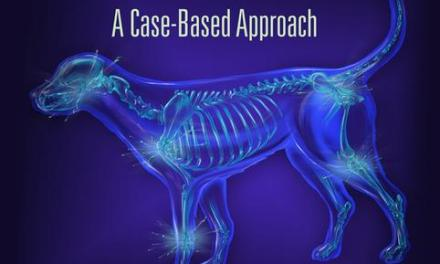Small Animal Fracture Repair, A Case-Based Approach PDF