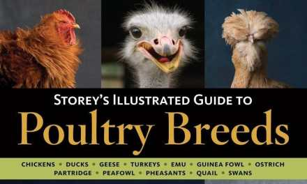 Storey's Illustrated Guide to Poultry Breeds Complete PDF