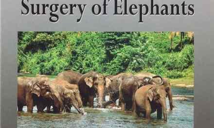 Biology, Medicine, and Surgery of Elephants PDF