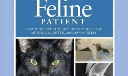 The Feline Patient 4th Edition