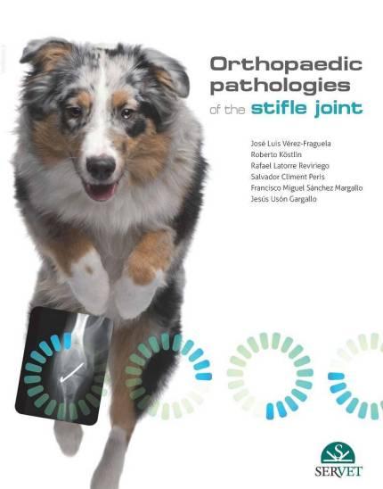 Orthopaedic Pathologies Of The Stifle Joint Free PDF