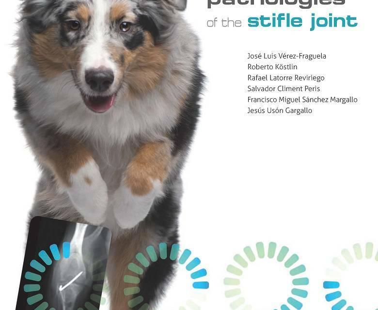 Orthopaedic Pathologies of the Stifle Joint PDF